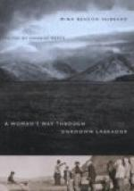 Woman's Way Through Unknown Labrador by