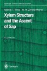 Xylem by