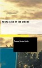 Young Lion of the Woods by