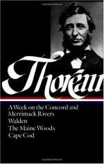 Critical Essay by Jamie Hutchinson by Henry David Thoreau