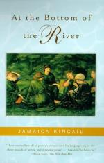 Critical Essay by Diane Simmons by Jamaica Kincaid