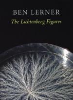 Critical Essay by David Shapiro by