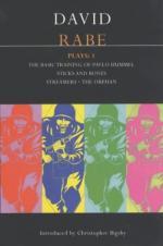 Critical Essay by N. Bradley Christie by