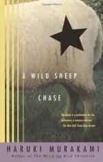 Critical Essay by Naomi Matsuoka by Haruki Murakami