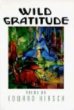 Critical Essay by Hugh Seidman by