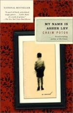 Critical Essay by Anthony Barson by Chaim Potok