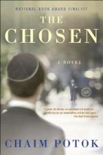Critical Essay by Hugh Nissenson by Chaim Potok