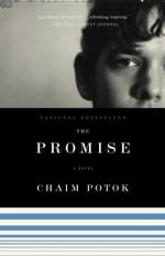 Critical Review by Richard Freedman by Chaim Potok