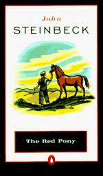Critical Essay by M. R. Satyanarayana by John Steinbeck