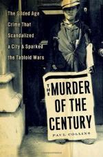 Critical Essay by Heinz Ickstadt by