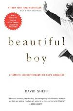 Beautiful Boy by David Sheff