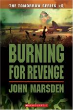 Burning for Revenge by John Marsden (writer)