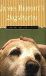 Dog Stories by James Herriot