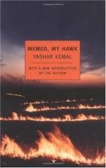 Memed, My Hawk by Yaşar Kemal