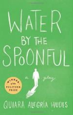 Water by the Spoonful by Quiara Alegría Hudes