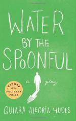 Water by the Spoonful by Quiara Alegría Hudes