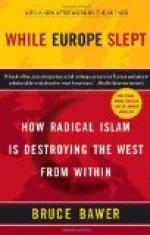 While Europe Slept by Bruce Bawer