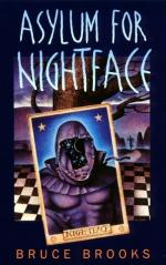 Asylum for Nightface by Bruce Brooks