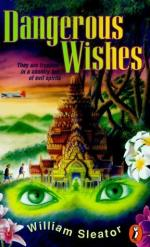Dangerous Wishes by William Sleator