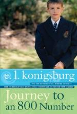 Journey to an 800 Number by E. L. Konigsburg
